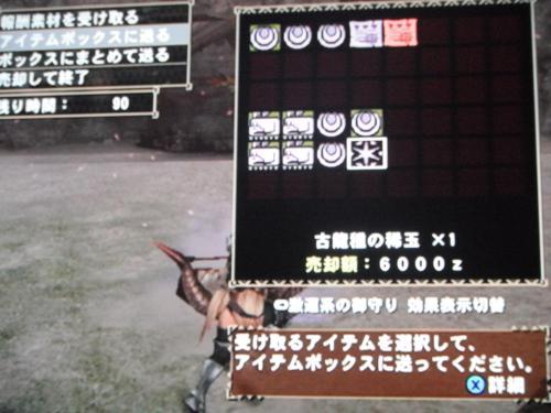 DSCF5010_convert_20110704002842.jpg