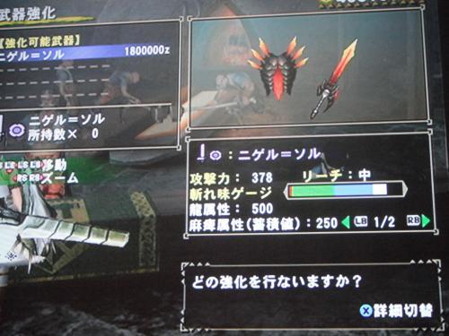 DSCF5013_convert_20110704002740.jpg