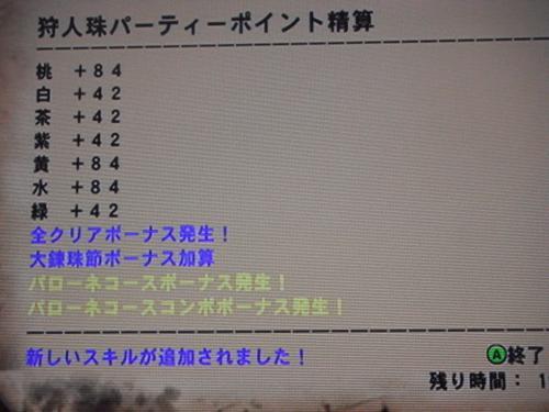 DSCF5045_convert_20110708100408.jpg