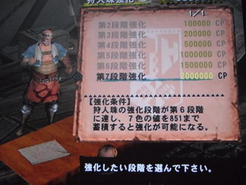 DSCF5048_convert_20110708100227.jpg