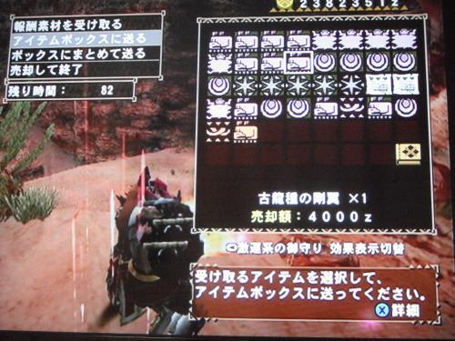 DSCF5090_convert_20110714121532.jpg