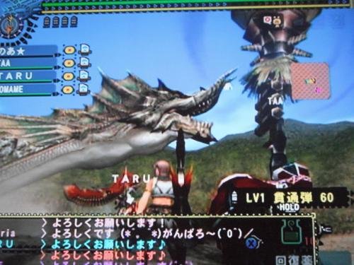 DSCF5102_convert_20110715094120.jpg