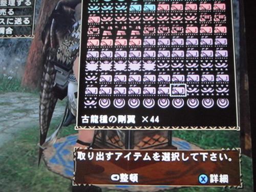 DSCF5139_convert_20110720195022.jpg