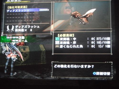 DSCF5182_convert_20110724110846.jpg