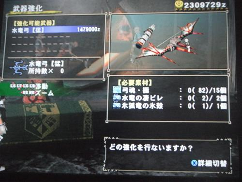 DSCF5321_convert_20110808122916.jpg