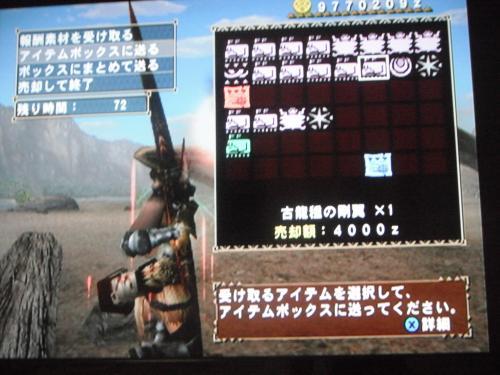 DSCF5450_convert_20110825074108.jpg