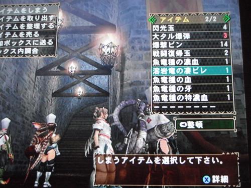 DSCF5595_convert_20110908013859.jpg