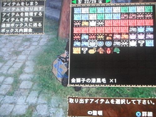 DSCF5656_convert_20110916173900.jpg