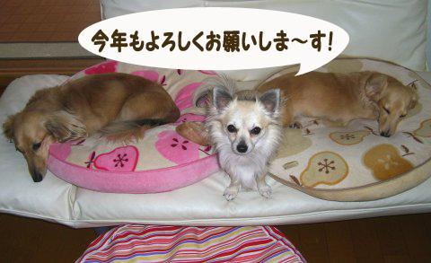 FC5-903のコピー
