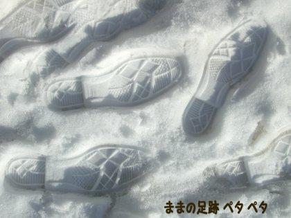 FC6-223のコピー