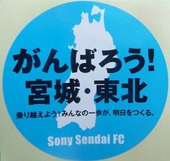 sony03.jpg