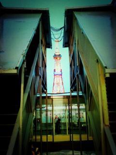 蜀咏tower悄 2
