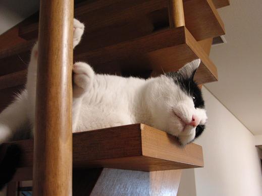 階段で・・・1