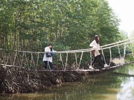 ホーチミンマングローブツアー怖い橋2