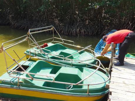 ホーチミンマングローブツアー足漕ぎボート