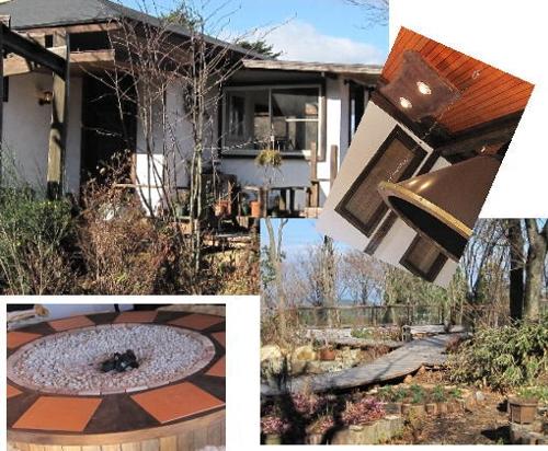 2009・12・06木漏れ日の森2