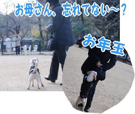 2010・01・10ヅカ2