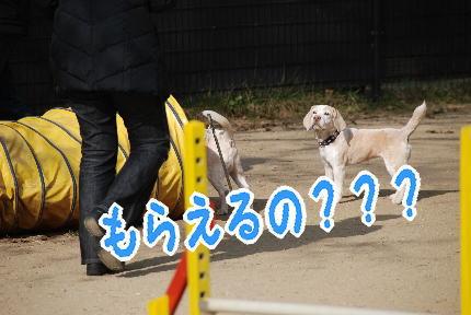 2010・01・10ヅカ7