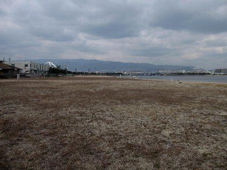 2011・01・23鳴尾浜1