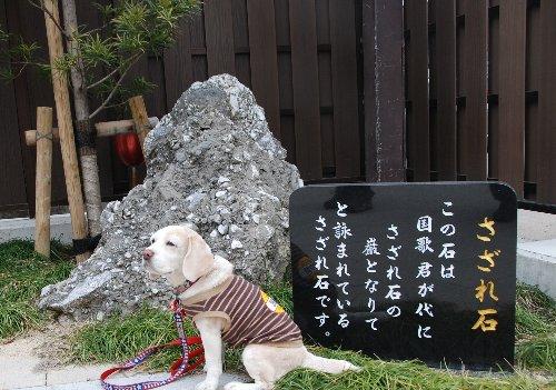 2011・02・05中仙道2