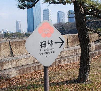 2010・02・12大阪城2