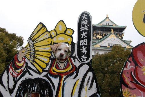 2010・02・12大阪城7