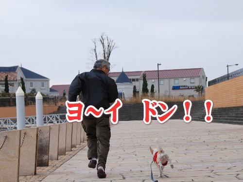 20120103芦屋浜5