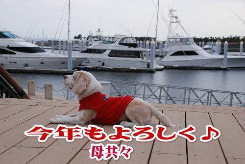 20120103芦屋浜6