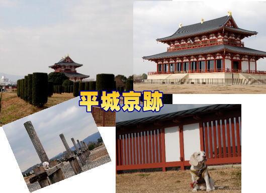 20120108平城京跡.