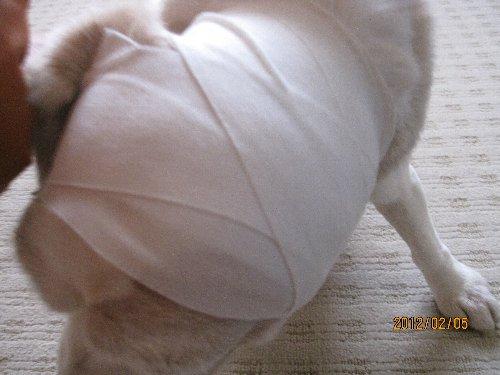 2012・02・05耳血腫3