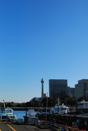 横浜 サンアロハ