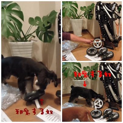 2_20111018183139.jpg