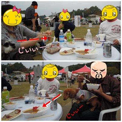 2_20111108233835.jpg