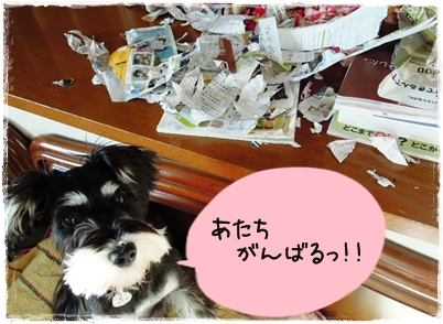 3_20111109214706.jpg