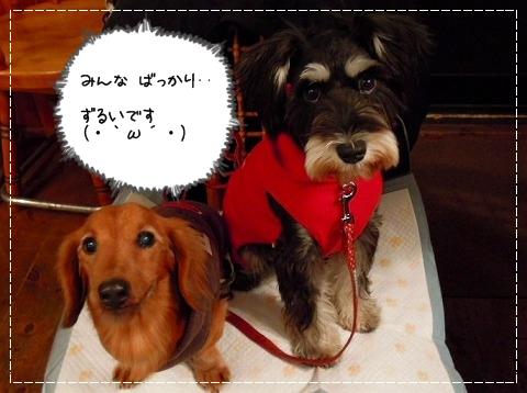DSCN0950_20111019003356.jpg