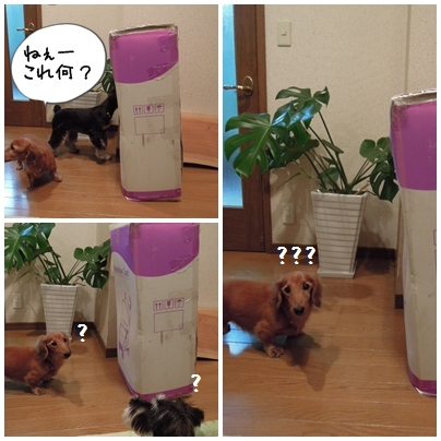 page1_20111018184247.jpg