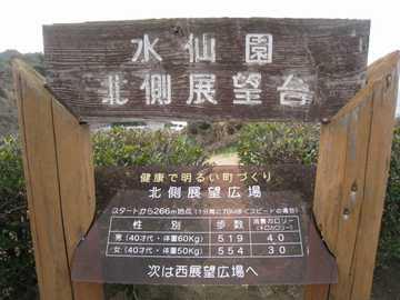 野母崎水仙園1