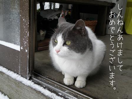 2010_01010021.jpg