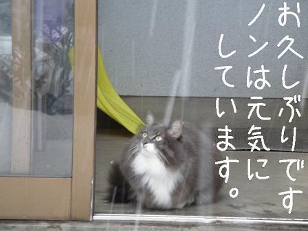 2010_12310107.jpg