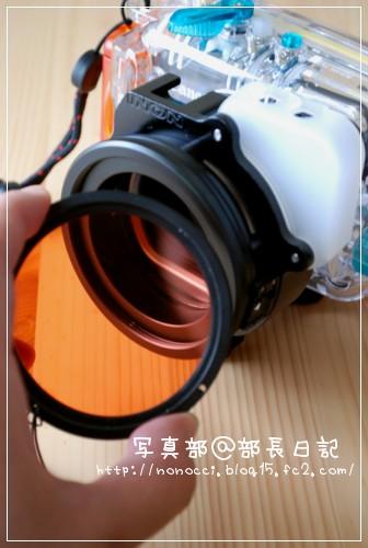 DSC_8407.jpg