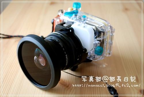 DSC_8409.jpg