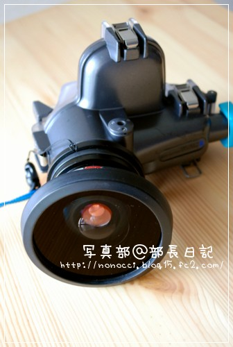 DSC_8411.jpg