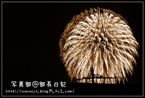 DSC_9653.jpg