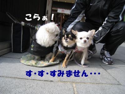IMG_6111182.jpg