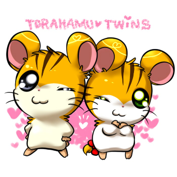 toratwins.jpg