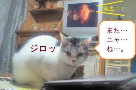 001_convert_20110104192053.jpg