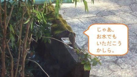 001_convert_20110218130004.jpg