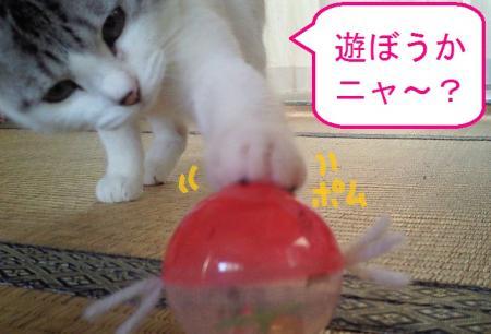 002_convert_20110114200718.jpg