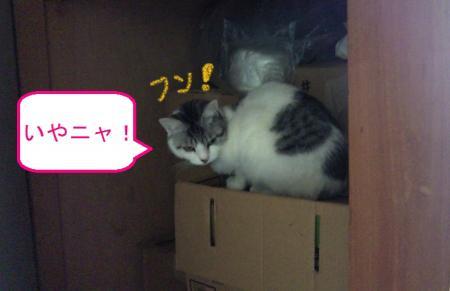 002_convert_20110127124850.jpg