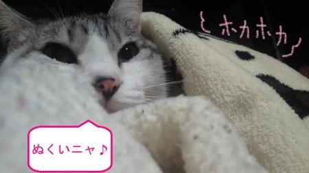 003_convert_20110122125221.jpg